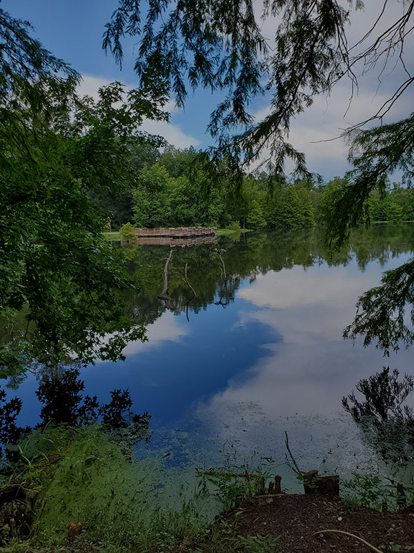 bonney Mill Pond Wallace NC